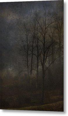 Evening Mist Metal Print by Ron Jones