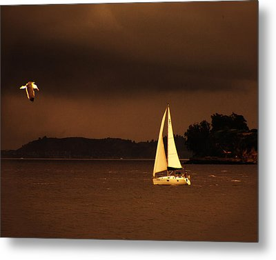 Metal Print featuring the photograph Evening Near Sausalito  by Chuck Caramella