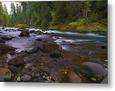 Evening On The Santiam River Metal Print
