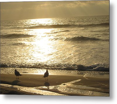 Metal Print featuring the photograph Evening Stroll by Judith Morris
