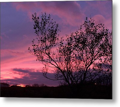 Evening Sunset Metal Print