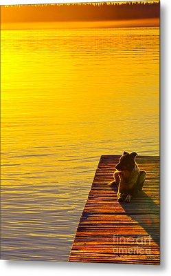 Evening Watch Metal Print by Judy Wood