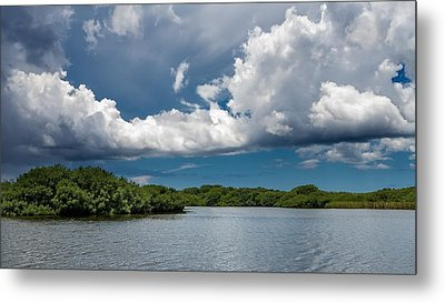 Everglades 0254 Metal Print by Rudy Umans
