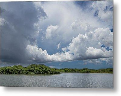 Everglades 0257 Metal Print by Rudy Umans