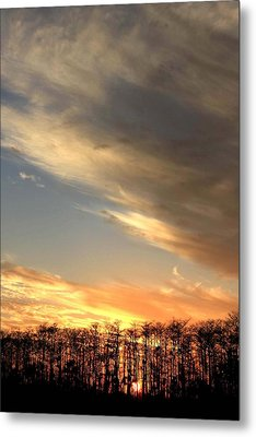 Everglades Clouds Metal Print by AR Annahita