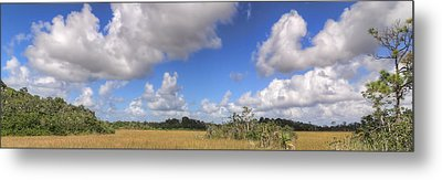 Everglades Landscape Panorama Metal Print by Rudy Umans