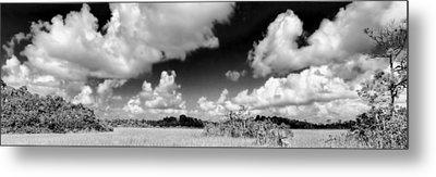Everglades Panorama Metal Print by Rudy Umans