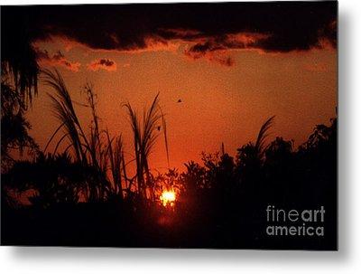 Everglades Sunset Metal Print by Steven Valkenberg