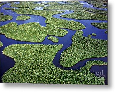 Everglades Waterways Metal Print
