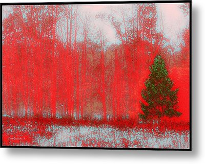 Evergreen Metal Print by Steve Godleski