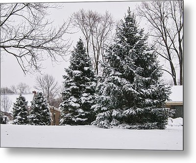 Evergreens In The Snow Metal Print