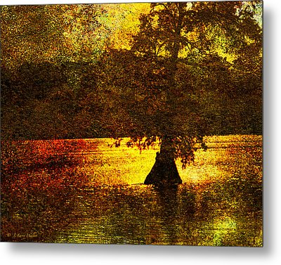 Metal Print featuring the digital art Evocative Waterscape Sunrise by J Larry Walker