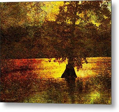 Evocative Waterscape Sunrise Metal Print by J Larry Walker
