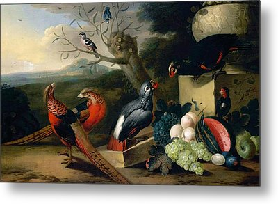 Metal Print featuring the digital art Exotic Birds by Tobias Stranover