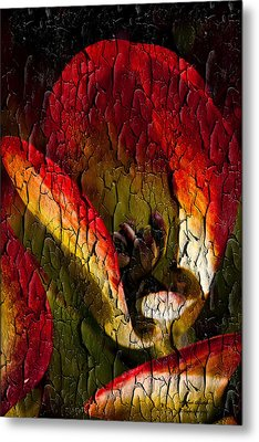 Experience Metal Print by Itzhak Richter