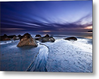 Exuberance 2 Metal Print by Ryan Weddle