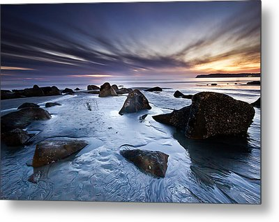 Exuberance Metal Print by Ryan Weddle