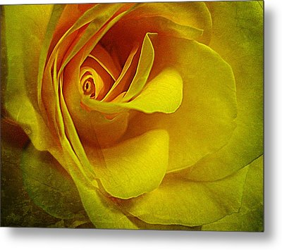 Eye Of Rose Metal Print