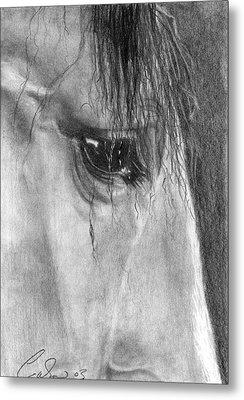 Eye Of The Beholder Metal Print by Caron Wiedrick