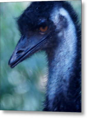 Eye Of The Emu Metal Print by DerekTXFactor Creative