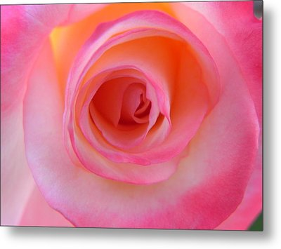 Metal Print featuring the photograph Eye Of The Rose by Deb Halloran