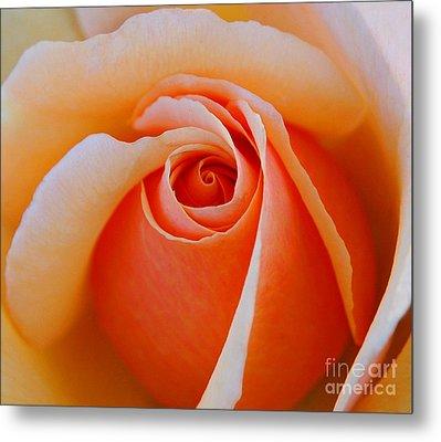Eye Of The Rose Metal Print