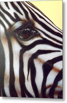 Eye Of The Zebra Metal Print by Darren Robinson