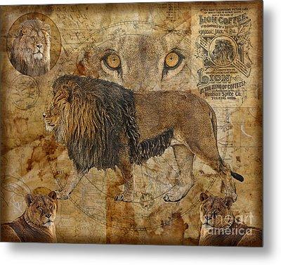 Eyes Of Africa Metal Print by Judy Wood