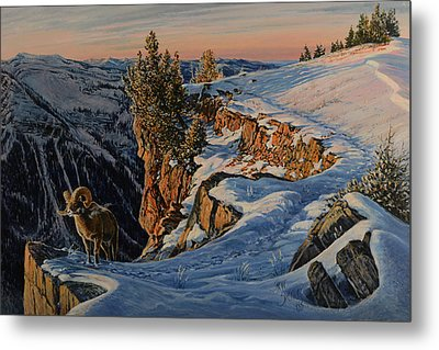 Metal Print featuring the painting Eyes Of The Canyon by Steve Spencer