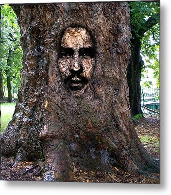 Face In A Tree Metal Print by Mary M Collins
