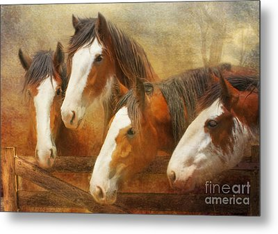 Faces Of Four Metal Print by Trudi Simmonds