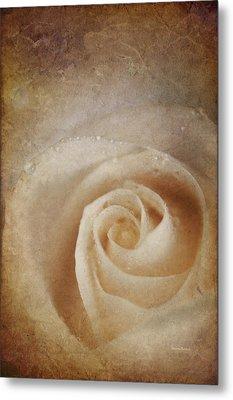 Faded Rose Metal Print