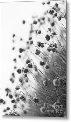 Fading Thrift Metal Print by Anne Gilbert