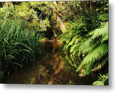 Fairy Forest River Metal Print