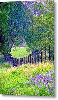 Fairy Tale Meadow With Lupines Metal Print by ARTography by Pamela Smale Williams