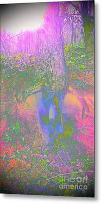 Metal Print featuring the photograph Fairy Tree by Karen Newell
