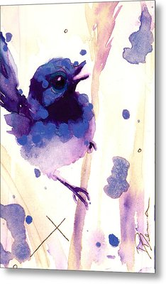 Fairy-wren Metal Print by Dawn Derman