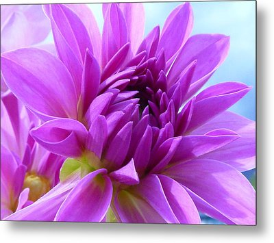 Fairytale Metal Print by Connie Handscomb