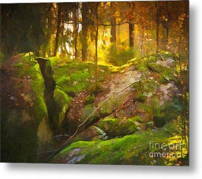 Fairytale Forest Metal Print by Lutz Baar