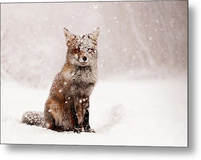 Fairytale Fox _ Red Fox In A Snow Storm Metal Print by Roeselien Raimond