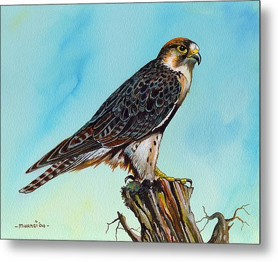 Metal Print featuring the painting Falcon On Stump by Anthony Mwangi