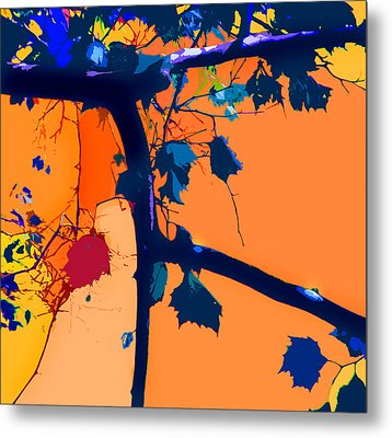 Fall Abstraction 5-2013 Metal Print by John Lautermilch