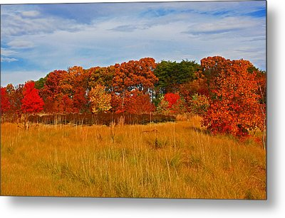 Metal Print featuring the photograph Fall Along The Highway by Andy Lawless