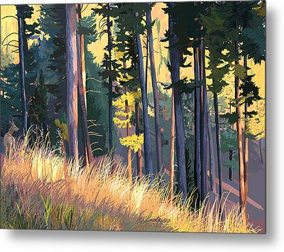 Fall Alpenglow Trees Grasses Metal Print