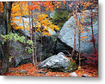 Fall Among The Rocks Metal Print by Bill Howard
