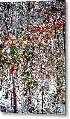 Fall And Winter Metal Print