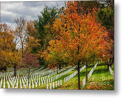 Fall Arlington National Cemetery  Metal Print by Gary Whitton