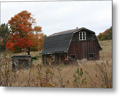 Metal Print featuring the photograph Fall Barn by Paula Brown