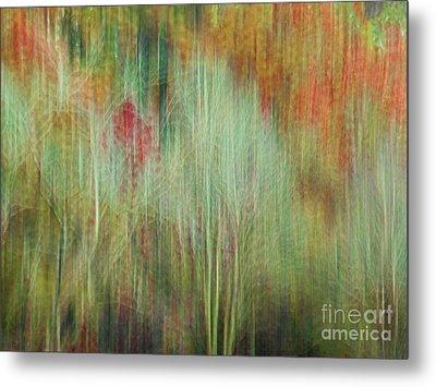 Fall Color Abstract 2 Metal Print