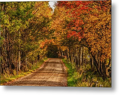 Fall Color Along A Dirt Backroad Metal Print by Jeff Folger